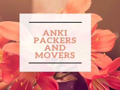 anki how packers and movers img 1